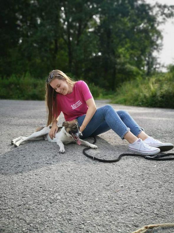 Venčenie psíkov v útulku – STD